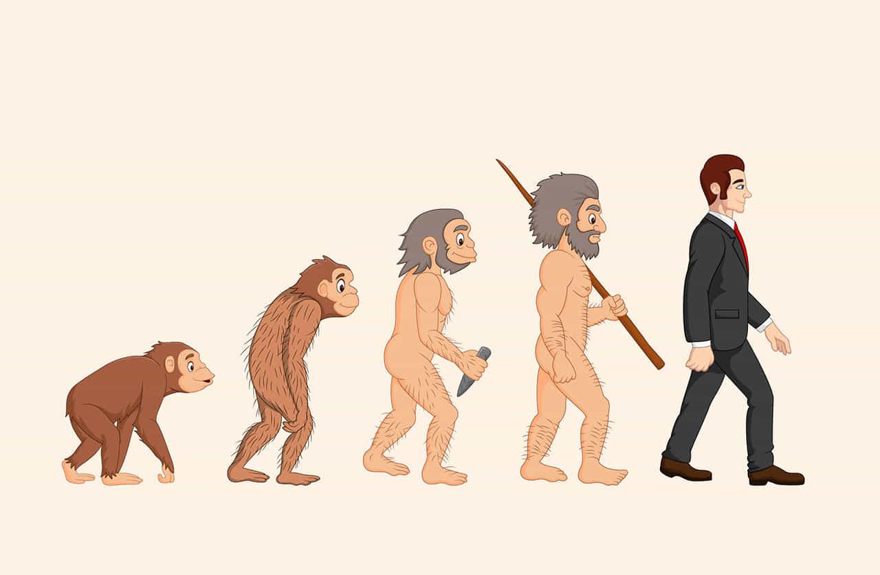 猿から現代人への進化の過程イラスト