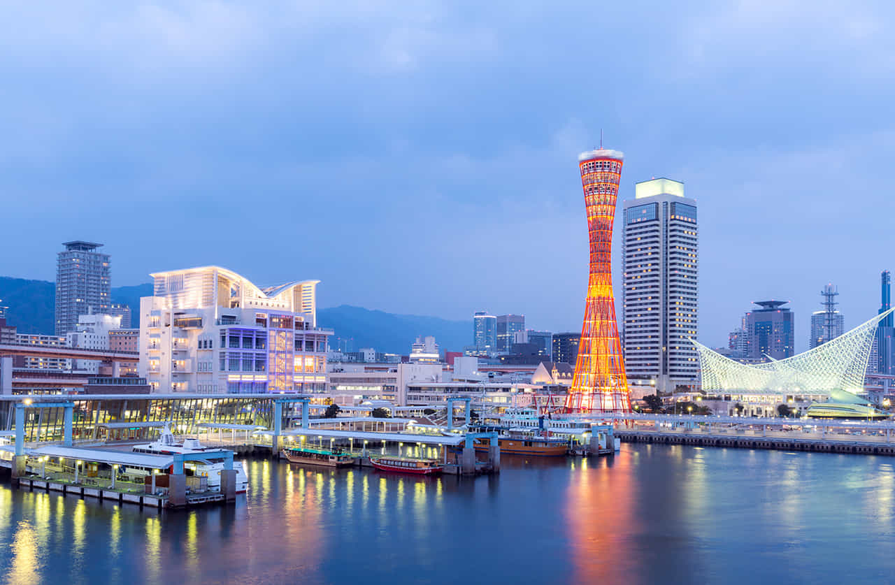 神戸タワーがライトアップされた神戸港の夕景