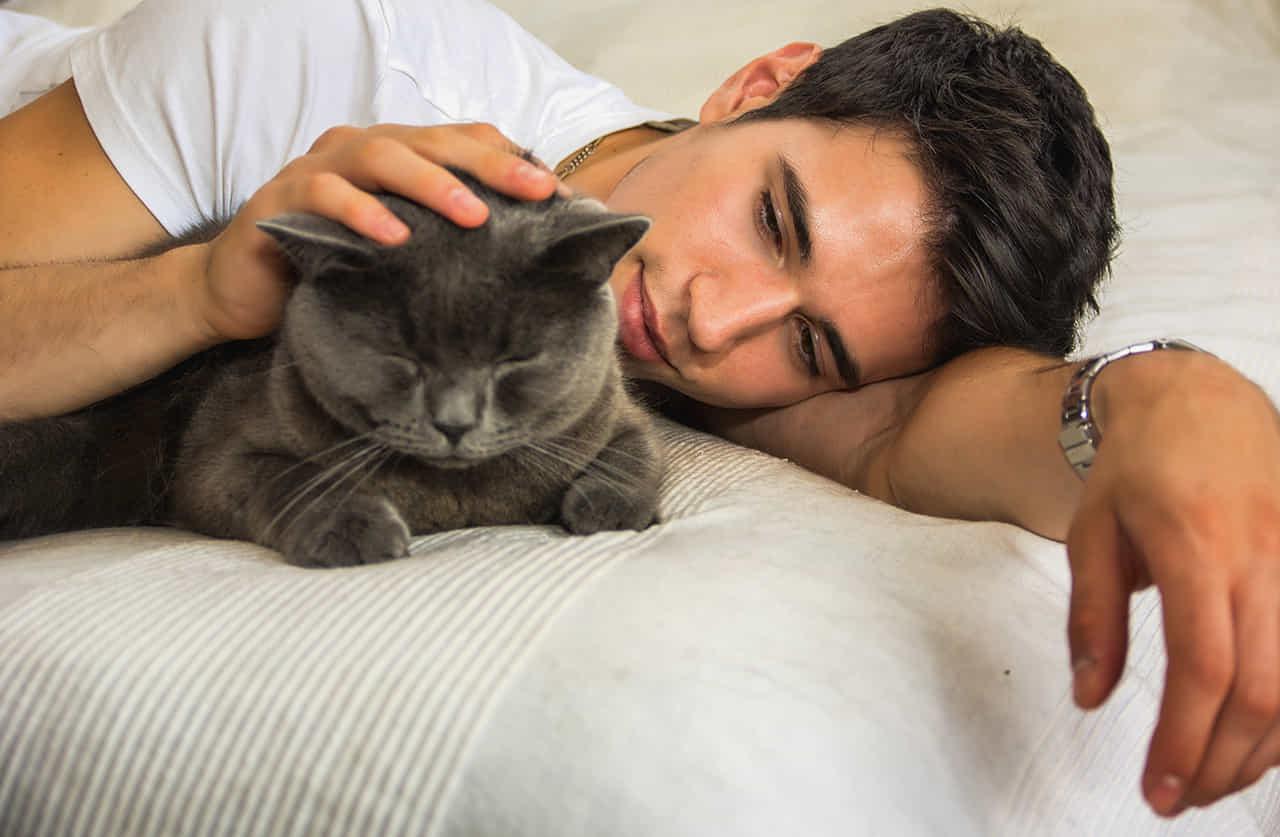 ベッドの上で黒い猫を撫でる男性